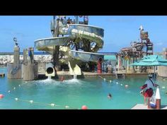 Expedia Road Trip:  Disney Fantasy Takes You to Castaway Cay