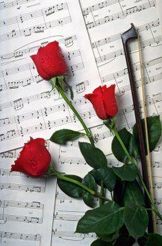 No hay nada mejor que la musica para expresar lo que el corazón calla❤