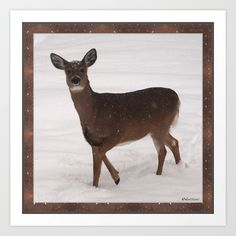 Photo Art Print by LEEMARIE - $17.68http://society6.com/product/nature-2if_print?curator=listenleemarie