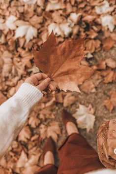 Aesthetic Hey, it's me, Carrie, the walking leaf. I've spent the past month walking around like Autumn personified but I JUST CAN'T HELP MYSELF! Fall Pictures, Fall Photos, Carrie, Fotografia Macro, Autumn Cozy, Autumn Fall, Winter, Autumn Feeling, Autumn Aesthetic