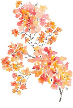 Shower Tree Petals No. 4 Watercolor Fine Art by pineapplebaystudio, $35.00