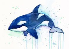 Killer Whale Orca Watercolor Art Print Whale Art by OlechkaDesign