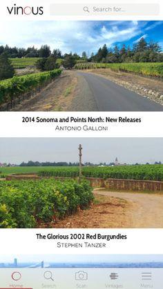 Vinous - Wine Reviews & Ratings by Vinous