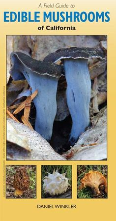 A Field Guide to Edible Mushrooms of California (Pamphlet; Mushroom expert Daniel Winkler has returned with another easy-to-use field guide to help hunters track down their favourite fungi in California! Mushroom Guide, Mushroom Recipes, Edible Mushrooms, Stuffed Mushrooms, Mushroom Identification, Aleta, Field Guide, Wine Recipes, California