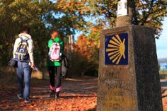 The last stretch of the Camino Frances is our most popular tour. This classic Camino trip captures the essence and brilliance of the Camino de Santiago. The Camino, Tours, Classic, Camino De Santiago, Classic Books