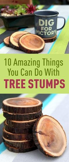 Take those tree stumps lying in your garden and start doing one of these beautiful projects. #woodworkingprojects