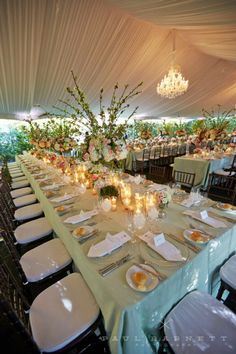 Masterfully done tent design