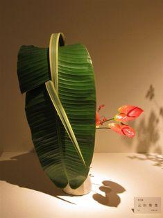 Ikebana Flower Arrangement, Floral Arrangements, Quotes About Flowers Blooming, Japanese Flowers, Flower Quotes, Plant Leaves, Floral Design, Plants, Decoration