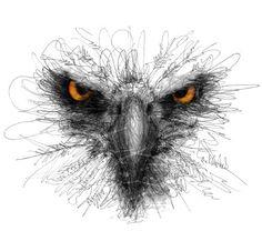 scribble drawings with ink pens Pencil Art Drawings, Animal Drawings, Cool Drawings, Art Sketches, Eagle Drawing, Scribble Art, Desenho Tattoo, Watercolor Bird, Watercolor Tattoo