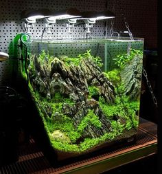 42 best aquascaping images aquarium design aquarium ideas nano rh pinterest com