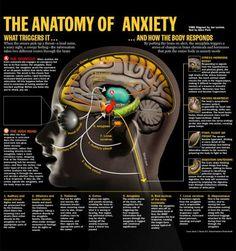 Anxiety...