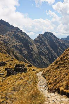 How to Hike the Machu Picchu Trail Day 2  #hikes #hiking #machupicchu #peru #incatrail  // Local Adventurer