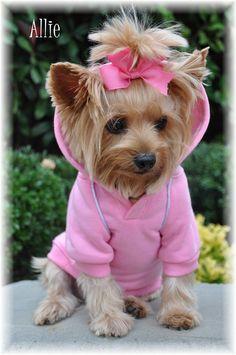 Doggie Design: Dog Sport Hoodie - Carnation Pink