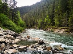 Lussier hot springs BC Canada. (2446x3264) (1080p) Photo by ME. Last post was removed because I didn't mention that I took the picture....   landscape Nature Photos