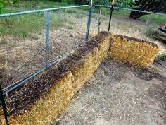 Creating a straw bale garden