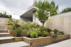 543de997c07a80762d000297_the-choy-house-o-neill-rose-architects_16.jpg (1559×1039); garden stepping up from the basement level.