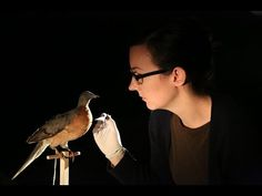 Reawakening Extinct Species  by questscience, YouTube #Science #De_Extinction