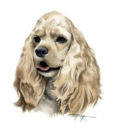 COCKER SPANIEL Dog Art Print Signed by Artist DJ by k9artgallery, $12.50