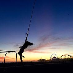Good Night! Buenas Noches! #flyingrings #santamonicanative #musclebeach