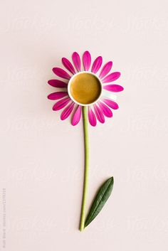 Coffee and petals by Ruth Black - Coffee, Flower - Stocksy United Coffee Art, I Love Coffee, Black Coffee, My Coffee, Coffee Time, Coffee Shop, Drawing Coffee, Funny Coffee, Coffee Photography