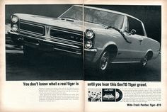 1965 Pontiac GTO Tiger Advertisement Road & Track June 1965 | Flickr - Photo Sharing!