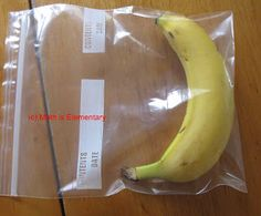 SCIENTIFIC METHOD INTRO LESSON~ First week of school!Use bananas to introduce students to the scientific method using bananas. Lesson description and free printable science journal worksheet. Science Inquiry, Science Resources, Preschool Science, Elementary Science, Physical Science, Science Classroom, Science Fair, Science Lessons, Teaching Science