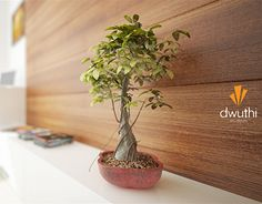 """Check out new work on my @Behance portfolio: """"Depth of field render.."""" http://be.net/gallery/52847989/Depth-of-field-render"""