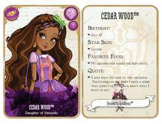 Cedar Wood Card