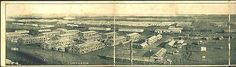 Camp Funston Kansas KS 1917 4 Fold Panorama of Camp Antique Vintage Postcard