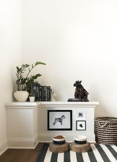 Black and white pet area with stripes