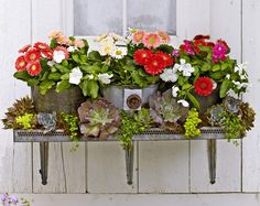 How to build this cute DIY window planter  It's a window a box, but not as you know it. Turn an old shelf and few rustic buckets into something brilliant! Best of all, it will cost you next to nothing.