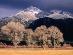 """""""Cottonwoods and Mountaintops in Winter, Taos, New Mexico"""" by Ralph Lee Hopkins"""