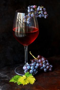 wine flower glass food produce drink red wine still life material painting wine glass stemware alcoholic beverage still life photography drinkware Glass Photography, Fruit Photography, Still Life Photography, Wine Painting, Fruit Painting, Art Du Vin, Wine Glass, Glass Art, Afrique Art