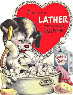 bath soap dog