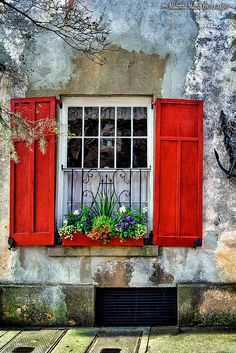 window box, charleston, south carolina | architectural details + container gardening More