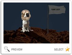 Youre Out Of This World Birthday Ecard With Dogs Happy New Year Dog