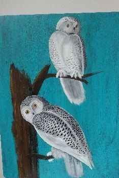 Snowy Owls painting, Snowy Owl Art, Owl Art, Hand painted owls, Wildlife Owl Art, Painted Owls by GroovyRejuvy on Etsy