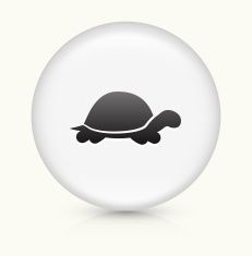 Turtle icon on white round vector button vector art illustration