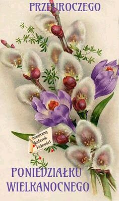 Crocus and Pussy Willow, oh my! This is a beautiful illustration and I never would have thought of putting these two flowers together, but. Vintage Greeting Cards, Vintage Postcards, Vintage Flowers, Vintage Floral, Flower Prints, Flower Art, Easter Art, Flower Images, Collages