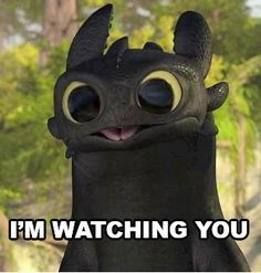 Bug Eyes Photo of Toothless Bug Eyes for fans of How to Train Your Dragon. edited pic of toothlessPhoto of Toothless Bug Eyes for fans of How to Train Your Dragon. edited pic of toothless Cute Toothless, Toothless And Stitch, Toothless Dragon, How To Draw Toothless, Hiccup And Toothless, Httyd Dragons, Cute Dragons, Pics Of Dragons, How To Train Dragon