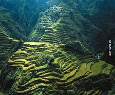 Banaue Rice Terraces Philippines This panoramic beauty was built over 2000 years ago by the Ifugao tribes with only primitive tools such as stones and wood. - I used to live in the Philippines Cool Places To Visit, Places To Travel, Travel Destinations, Iloilo, Banaue Rice Terraces, Les Philippines, Philippines Travel, Places, Viajes