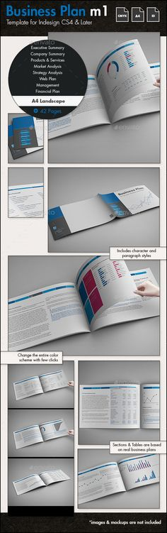 Professional Business Plan Template   A4 Portrait  CS4  8 267x11 692     Professional Business Plan Template   A4 Portrait  CS4  8 267x11 692  a4   analysis  business  business plan  business present