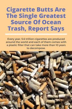 Cigarette Butts Are The Single Greatest Source Of Ocean Trash, Report Says Zero Waste, Pay Attention, Health Tips, Campaign, Health Fitness, Advice, Ocean, Plastic, Posters