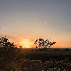 Buongiorno.  #buongiornopisa #calcinaia #ig_tuscany #toscana_super__pics #tuscany #tuscanystyle #sunrise #sky #skyporn #orange #sun