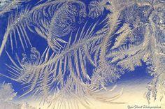 Toutes les tailles | Dentelles de glace. | Flickr: partage de photos!