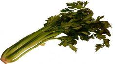 Celer řapíkatý – zdravá vitamínová dobrota!