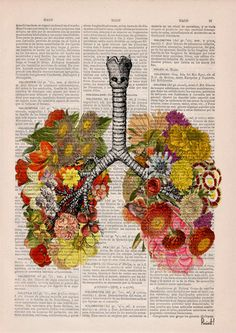 Cyber Monday Flowery Lungs human Anatomy Print on par PRRINT