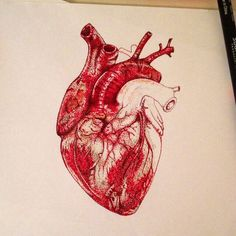 Pin by cassidy lombardi on tattoos in 2019 анатомия, фоновые Human Heart Tattoo, Human Heart Drawing, Anatomy Drawing, Anatomy Art, Norman Rockwell, Art Hipster, Drawing Simple, Face Anime, Art Couple