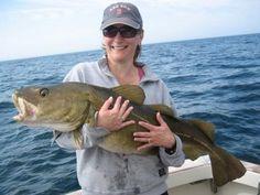 Polowy dorsza   #dorsz #cod #fish   Fish One Gdańsk - http://www.fish-one.pl
