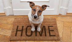 Aprenda a falar da sua casa em inglês
